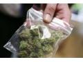 В Харцызске полицейские ведут активную работу по пресечению фактов незаконного оборота наркотиков