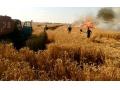 РЕЗОНАНС! На Медвежке подожгли поле с пшеницей
