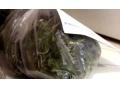 В Харцызске у местного жителя обнаружили марихуану